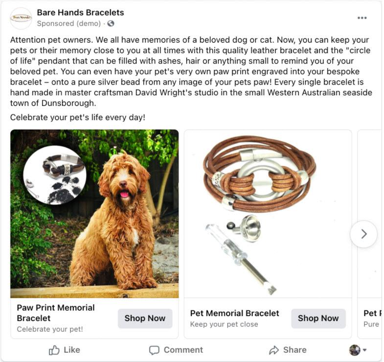 Facebook advertising for niche markets